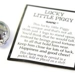 Lucky Little Pig With Story Card (Pig Measures about 3/4 long) by Ganz