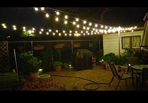 Christmas G40 Globe Edison Bulb String Light Ul Listed